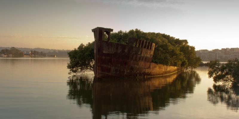 Ayrfield Gəmisi