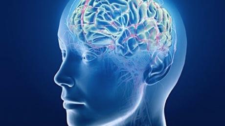 Beyin Gücünüzü Artırın