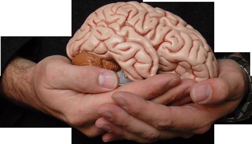 Beynindən Düzgün Yararlan