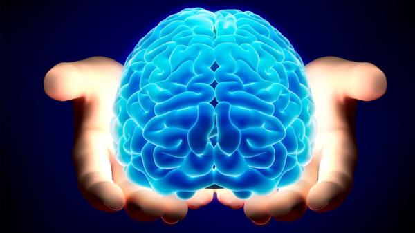Beyniniz Daha Yaxşı Çalışsın!