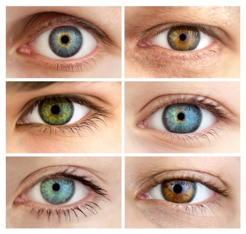 Göz rəngi münasibətlərə necə təsir edir?